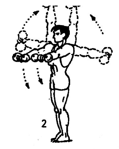 Гантельная гимнастика картинки